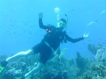 Resiflerde mutlu bir dalıcı